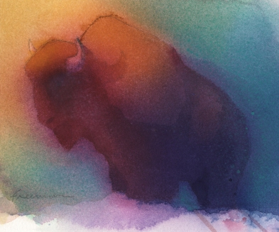 American buffalo-watercolor
